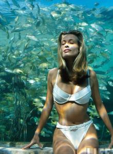 Frederique van der Wal bikini cameltoe