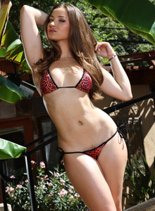 Hairy beaver Dani cheetah wearing black and red bikini